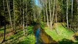rzeka, strumień, potok, mała rzeka, wiosna, lato, chocina, rzeka chocina, kaszuby