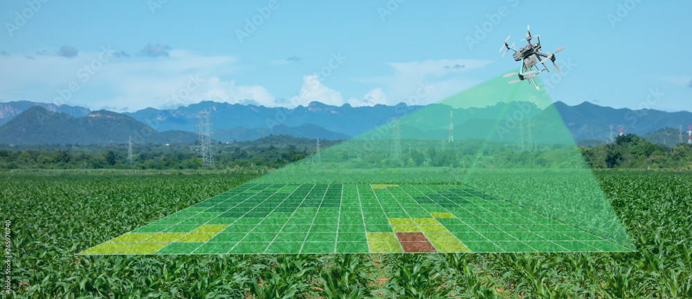 Fototapety, obrazy: drone for agriculture, drone use for various fields like research analysis, safety,rescue, terrain scanning technology, monitoring soil hydration ,yield problem and send data to smart farmer on tablet