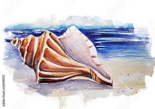 Canvas-taulu Beautiful seashell on the beach watercolor illustration
