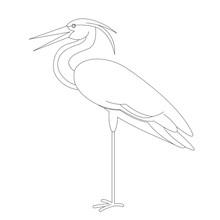 Bird Heron ,vector Illustration, Lining Draw,profile