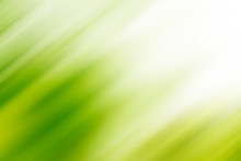 Abstract Green Motion Blur Background With Bright Light. Nature Fresh Background.