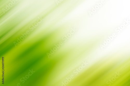 fototapeta na ścianę Abstract green motion blur background with bright light. Nature fresh background.