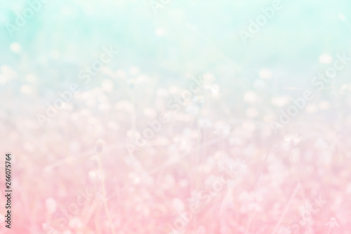 Fotografiet  Sweet and pastel color  flower ,Soft and blurry focus photo in vintage style,blu