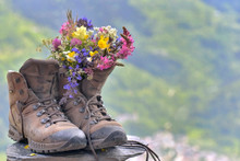 Bouquet Of Pretty And Colorful Flowers Put On Hikings Shoes On Green Mountain Background