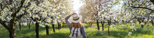 Woman With Straw Hat Enjoying Time In Blossom Cherry Orchard At Spring