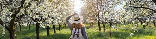 Woman with straw hat enjoying time in blossom cherry orchard at spring Canvas