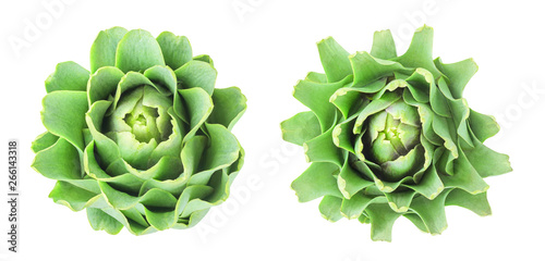Raw artichoke head, top view, isolated on transparent background Wallpaper Mural