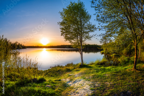 Photo  Lake with trees at sunset on a beautiful summer evening