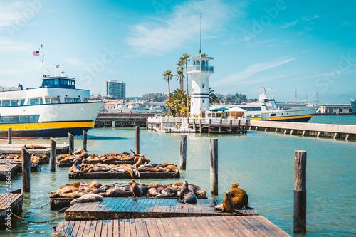 Obraz San Francisco Pier 39 with famous sea lions, California, USA - fototapety do salonu