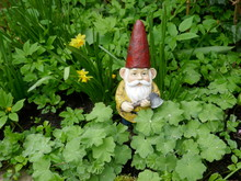 Garden Gnome With Red Hat And An Ax In Hand Stands  Between Green Plants. (This Sculpture Has No Recognizable Mark, Logos, No Reference To The Manufacturer And Is Therefore Not Copyrighted)