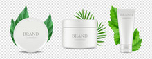 Vector Organic Cosmetics Tube ...