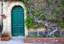 Old Green Door With Green Trees And Flowers