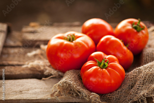 Fototapeta Real tomatoes from their garden