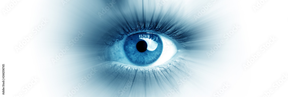 Fototapeta Blue eye of a woman. Eye in motion. Wide banner with a white background.