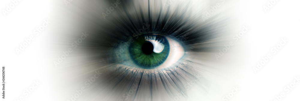 Fototapeta Eye of a woman. Eye in motion. Wide banner with a white background.