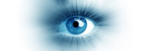 Blue Eye Of A Woman. Eye In Mo...