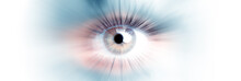 Eye Of A Woman. Eye In Motion. Wide Banner With A White Background.