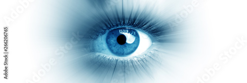 Fototapeta Blue eye of a woman. Eye in motion. Wide banner with a white background. obraz