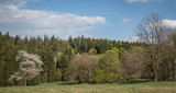 Adrspach - Teplice,  skalne miasta,