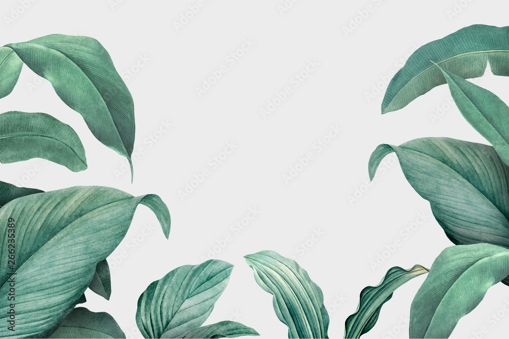 Fototapety, obrazy: Tropical leaves frame