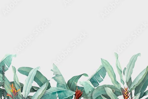 tropikalne-liscie-tlo