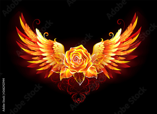 Fotografía  Fire rose with wings