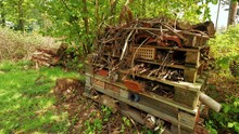 Camera Moving In Towards A Wildlife Bug Hotel In The Woods.  Shows How You Can Make A Good Environment For Bugs And Insects Using Old Stuff.