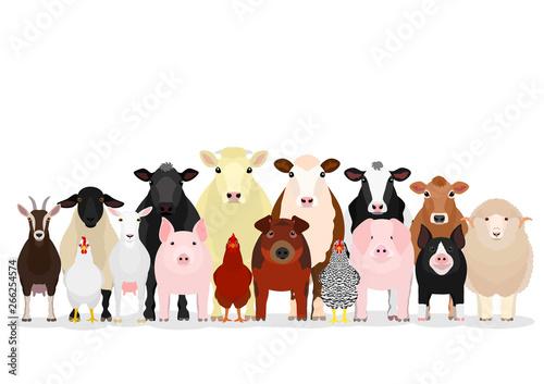 Fotografía various livestock group
