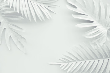Collection of tropical leaves,foliage plant in white color with space background.Abstract leaf decoration design.Exotic nature art