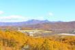 日本 秋の八ヶ岳
