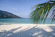 White beach with coconut palm leaf in tropical sea