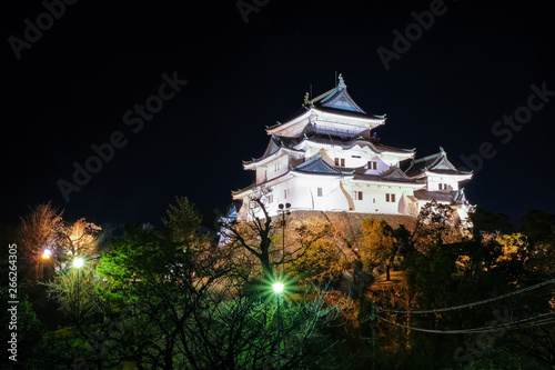 Obraz na plátně 和歌山城 夜景