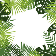 Vector Backdrop Or Background Of Tropical Green Foliage Of Rainforest And Jungle Plants: White Place For Text Surrounded By Frame Or Border Of Leaves Of Fern, Palm, Monstera.