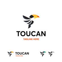 Flying Toucan Logo Template, Modern Toucan Logo Designs Vector