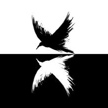 Black And White Grunge Brush Raven Silhouettes