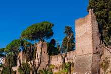 View Of A Section Of Rome Anci...