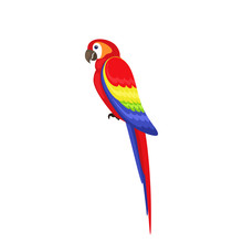 Bird Parrot With Flat Style On...