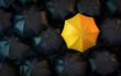 canvas print picture - 3D Illustration schwarze Regenschirme und gelber Regenschirm