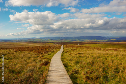 Door stickers Meadow Ireland, County Fermanagh, Cuilcagh Mountain Park, Legnabrocky Trail