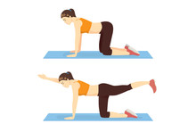 Woman Doing Bird Dog Plank Exercise In Left And Right Side. Illustration About Workout Position Guide.