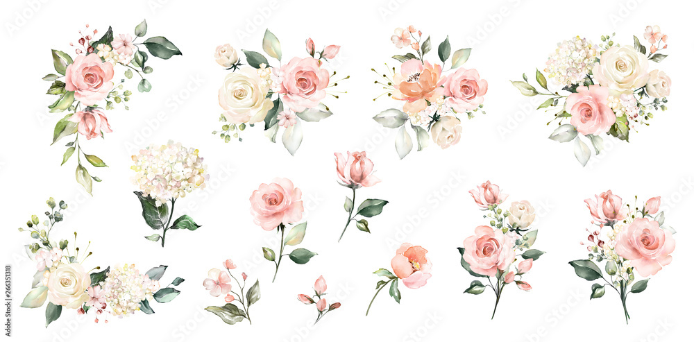 Fototapeta Set watercolor arrangements with roses. collection garden pink flowers, leaves, branches, Botanic  illustration isolated on white background.