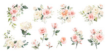 Set Watercolor Arrangements Wi...