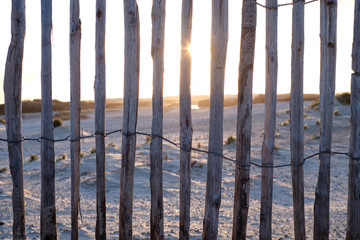 Wooden fence in the dunes near The Hague, Netherlands.