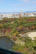 名古屋城の天守閣からの風景