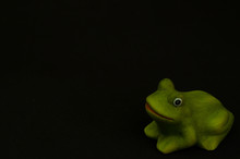 Fake Frog On Black Background