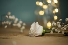 Weiße Blüte Auf Holz Mit Sch...