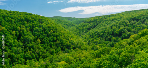 Fototapeten Wald Whitaker Point Landscape view from rock cliff hiking trail, Ozark mountains, nwa northwest arkansas