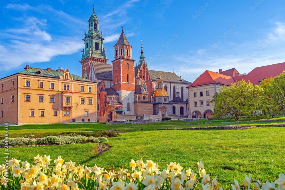 Fototapety, obrazy: Wawel w Krakowie