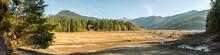 Dry Baker Lake With Tree Stump...