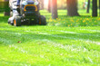Leinwanddruck Bild - Green grass lawn with  defocused lawnmower on a backdrop